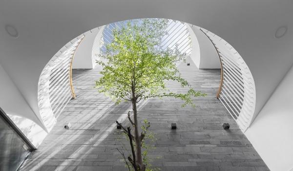 Giếng trời – Thiết kế thiên nhiên trong nhà