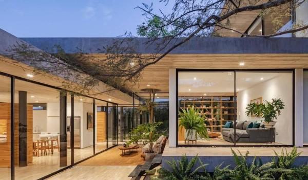 Thiết kế vườn bên trong nhà, tại sao không?